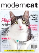 Modern Cat Magazine Fall/Win 2012/13