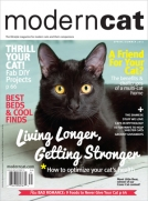 Modern Cat Magazine Spring/Summer 2013